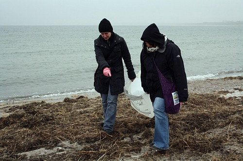 "Hohe Düne (GERMANY): ""Ocean Initiatives 2012"": EUCC-D collecting Marine Litter at the beach."